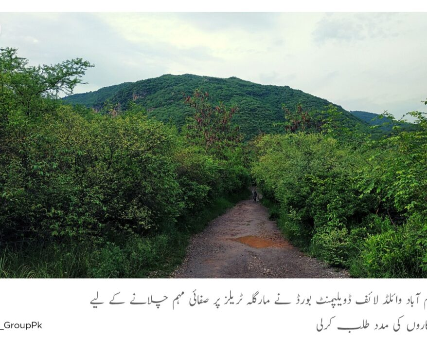 IWMB urges volunteers to help remove wastes on Margalla trails