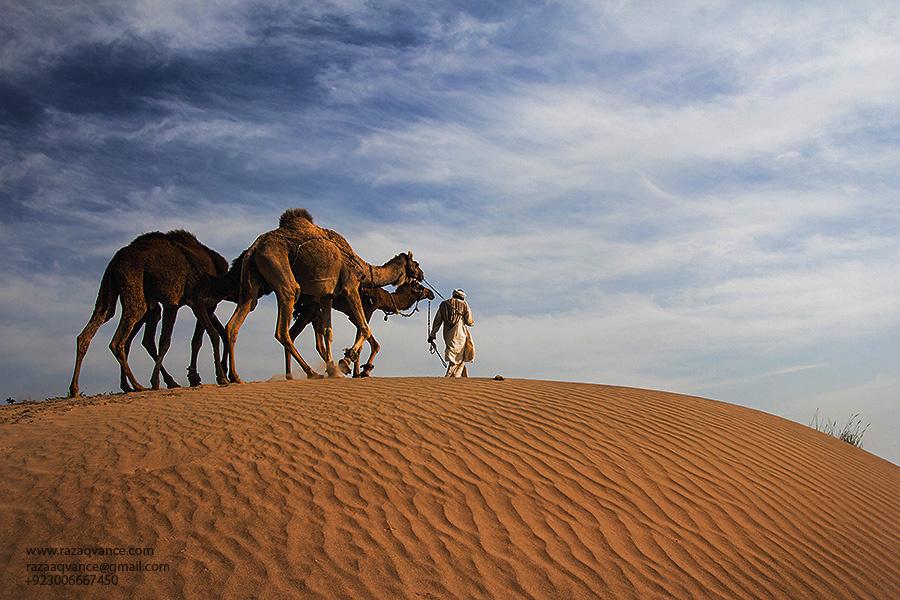 Thal-Desert