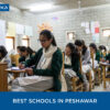 best schools in peshawar