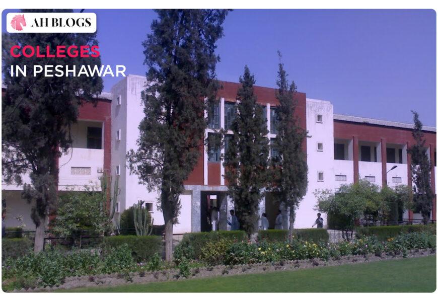 colleges in Peshawar