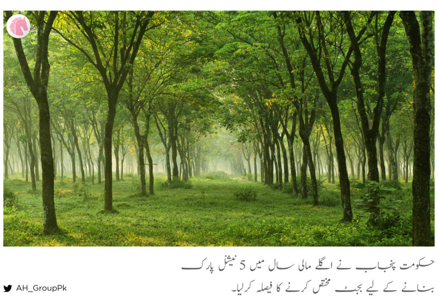 Punjab to allocate funds for 5 new national parks