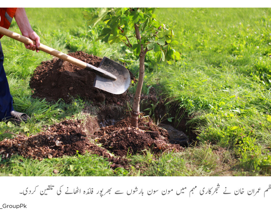 PM instructions to use moon soon rain to save tree and environment