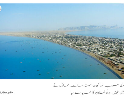 seven countries shows interest in Gwadar project