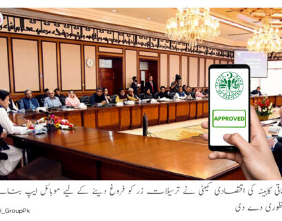 Cabinet approves launching a mobile app for foreign remittances