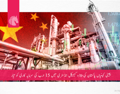 Chinese companies want to invest in Pakistan's PetroChemical industry
