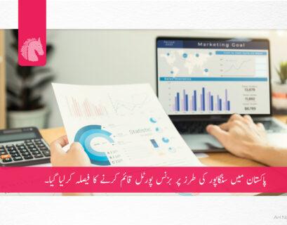 Pakistan plans to launch business portal on Singaporean model